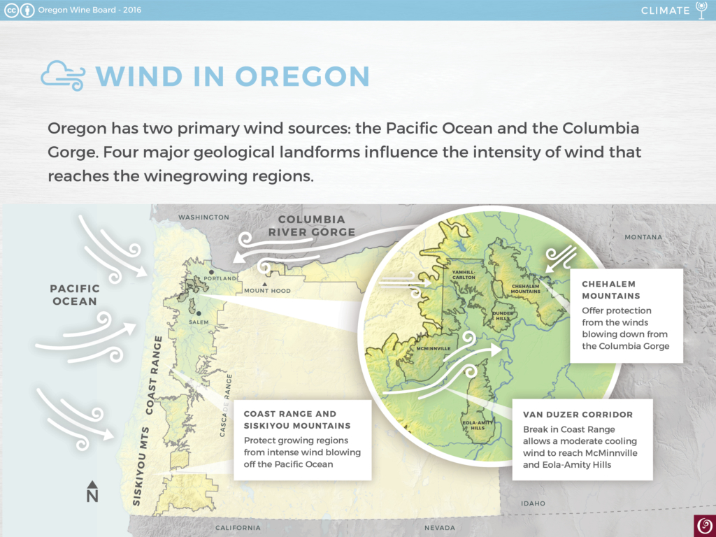 Oregon-Wine-Climate-Wind